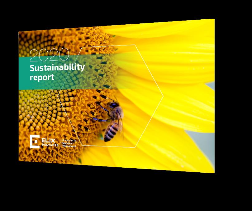 <strong>我们的2020年可持续发展报告</strong><br>现在可获得的