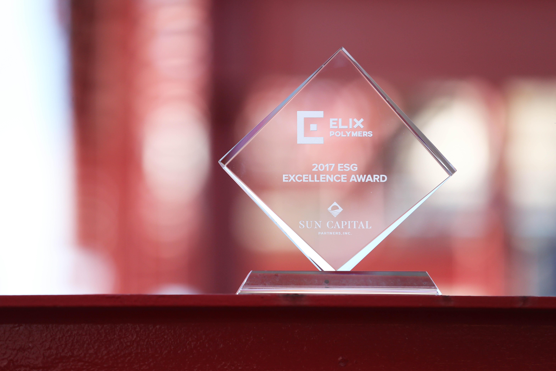 2017 ESG EXCELLENCE AWARD (Environmental, Social Responsibility & Governance)