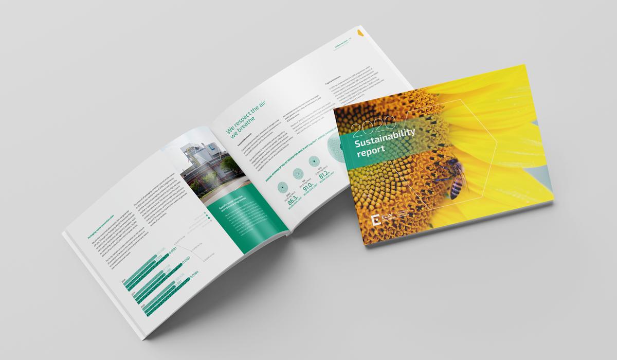 SDG, Report, Sustainability
